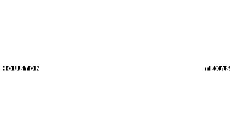 logo-houston